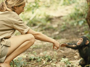 jane-goodall-1-Resized